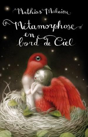 métarmophose en bord de ciel-couverture