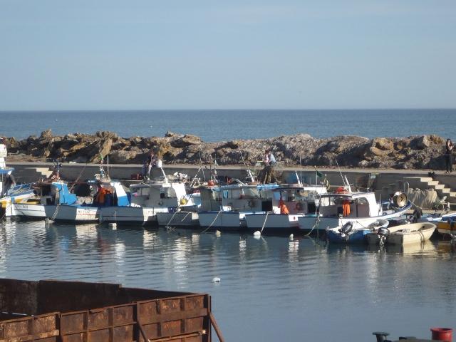 bateaux-port-selinunte